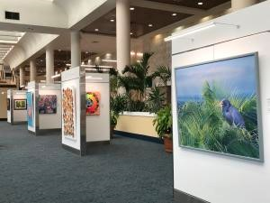 Public Invited to Free Art Reception at PBIA's Airport Art Gallery
