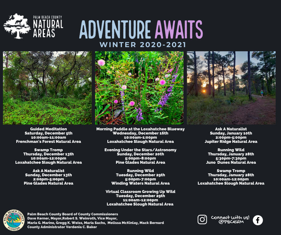 Adventure Awaits Winter 2020-2021