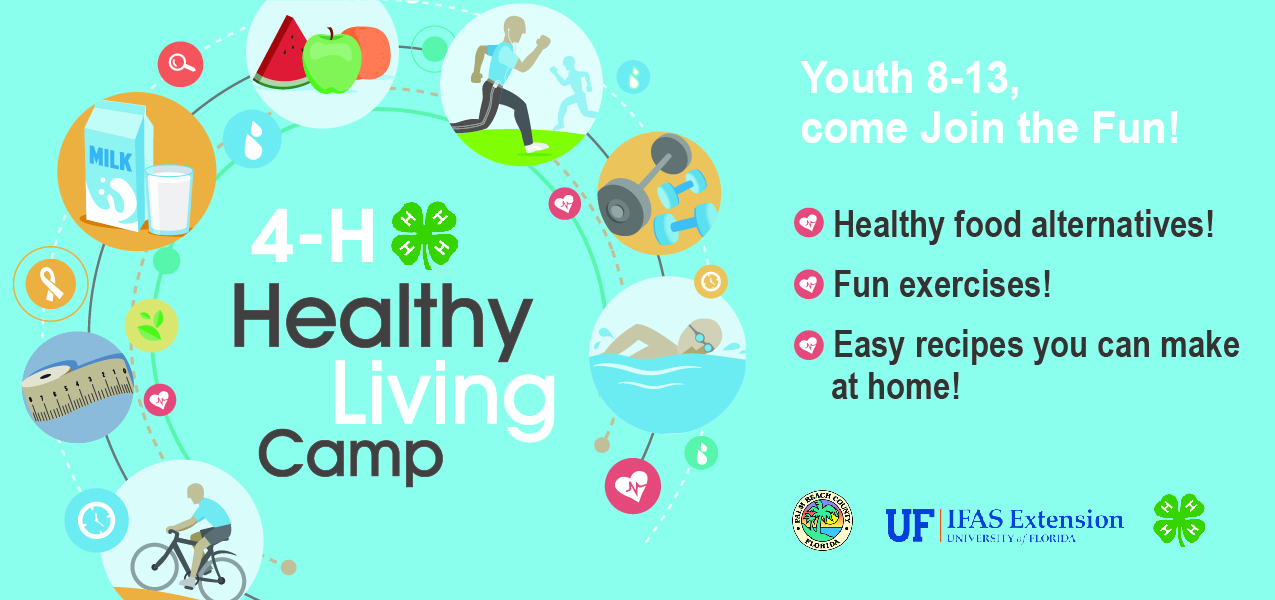 Healthy Living Camp banner