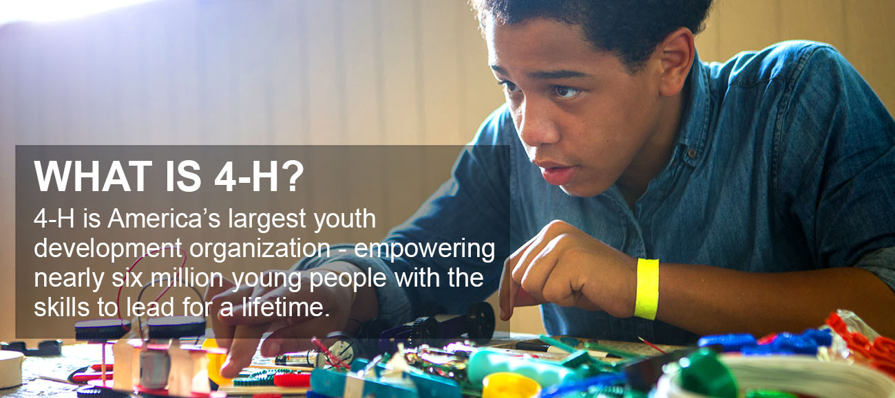 4-H is America's largest youth development organization