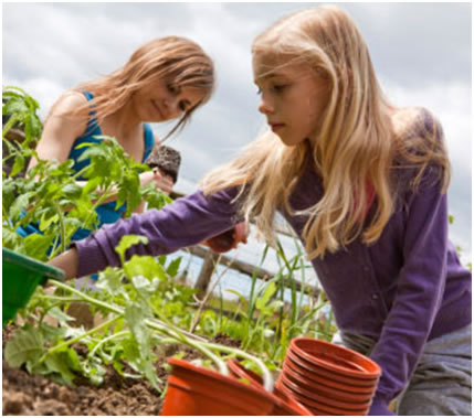 two girls planting herbs
