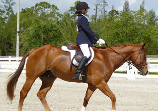 Girl and horse in Dressage competition