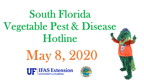 PBC Pest & Disease Hotline image