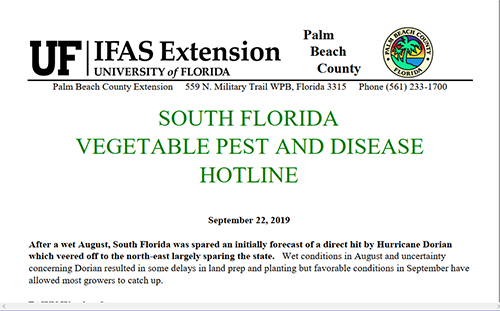 Image of Pest and Disease newsletter