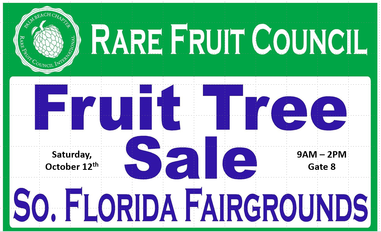 rare fruit tree sale