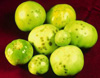 green tomatoes with black spots