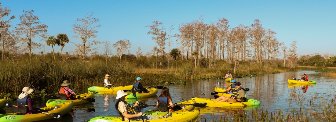 Group of kayakers paddling in a Palm Bech County Natural Area
