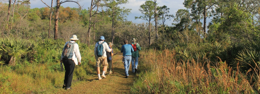 Pictures of Hikers on a multiuse trail in the Jeaga Wildways