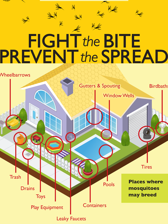 Graphic of Home Showing Areas Where Container Mosquitoes Could Breed