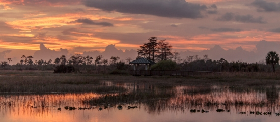 Picture of a shade shelter overlooking a restored open water wetland at sunset at Pine Glades Natural Area