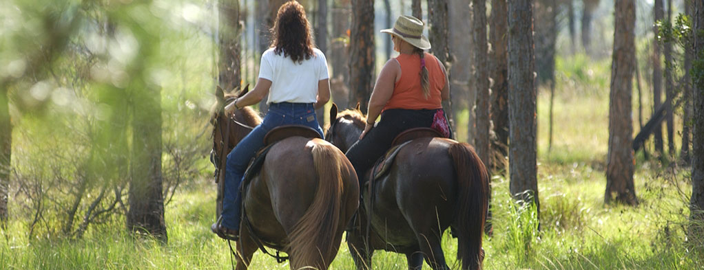 Equestrians riding in natural areas