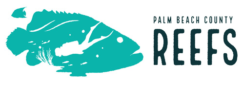 Palm Beach County Reefs Logo