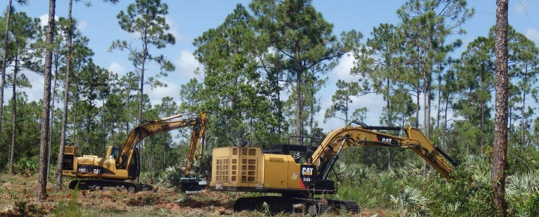 Machines Removing Vegetation to Reduce Fuel Levels for Wildfire Prevention