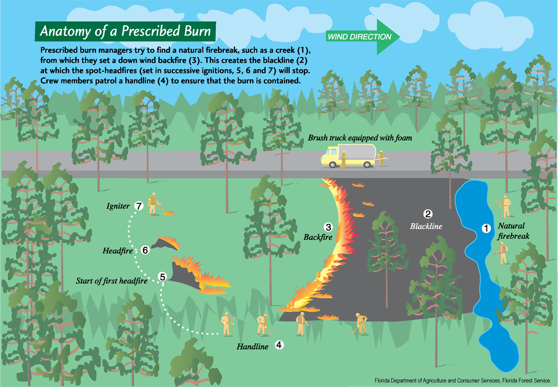 Diagram of how a prescribed fire is controlled
