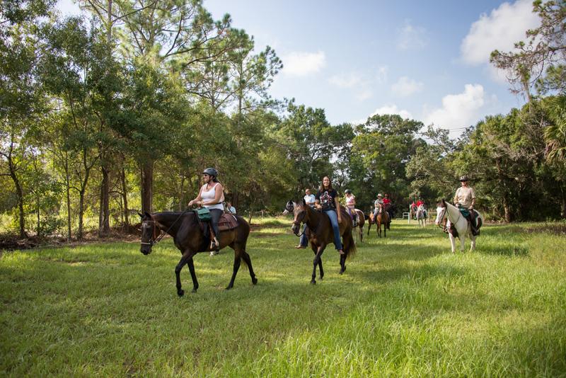 Parks Amp Recreation Equestrian Trails