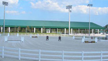 jim brandon equestrian center
