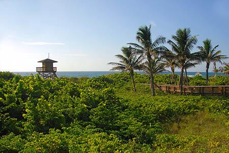 Parks & Recreation - Ocean-Reef