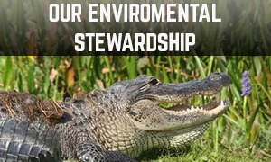 our enviromental stewardship