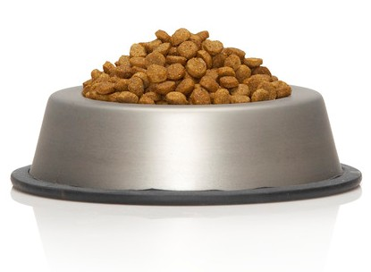 Dog bowl with dry food
