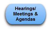 Hearing-Meetings-Agenda_Icon.jpg