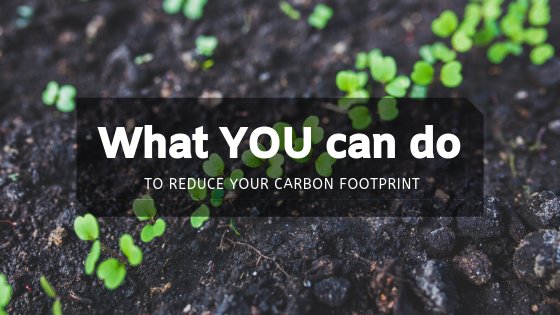 What YOU can do to reduce carbon footprint