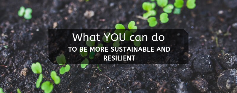 What you can do to be more sustainable and resilient - garden soil with sprouts in background